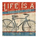 life_is_a_beautiful_ride_shower_curtain