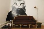 PDX-RMS_Junior_deluxe_cat_sofa_20130710_1722.png