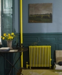 radiator-colorama