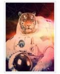 Astrotiger-John-Keddie-Art-Print-30
