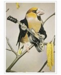 rock-chick-Sammy-Slabbinck-Art-Print-30