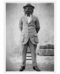 Walrus-Man-John-Keddie-Art-Print-30